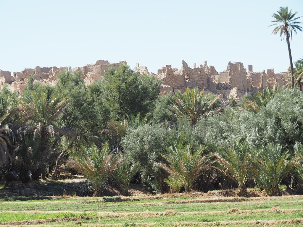 Die alte Kasbah haben wir aus Zeitgründen nicht mehr besichtigt