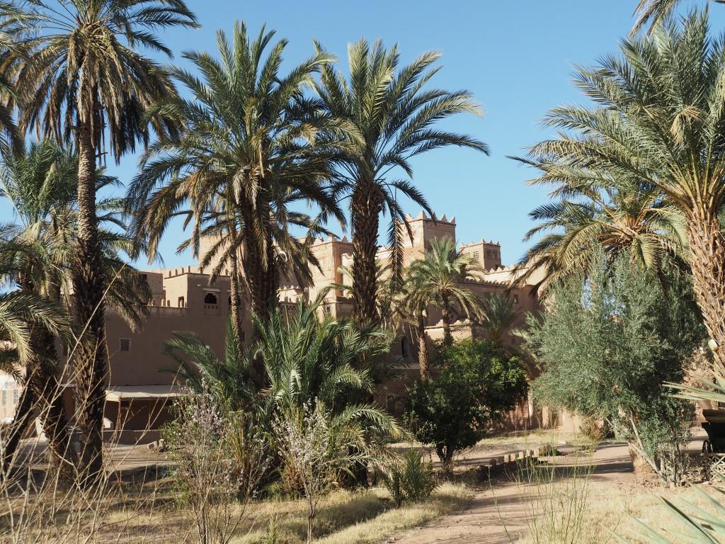 Blick auf die 350 Jahre alte Familienkasbah