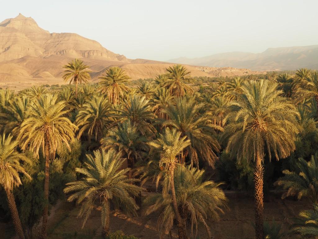 Blick von der Terrasse der Kasbah